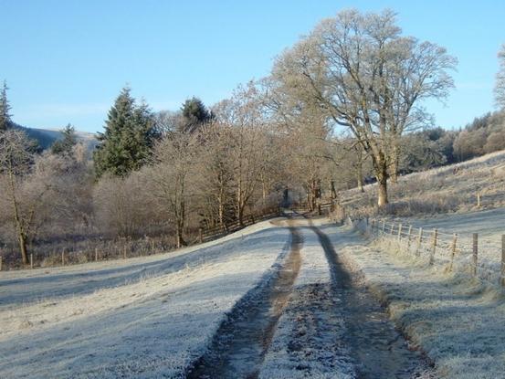 Secluded frosty walk near Stobo