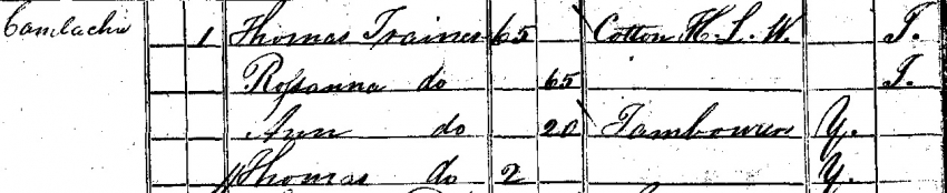 The Trainer Family in 1841 Census