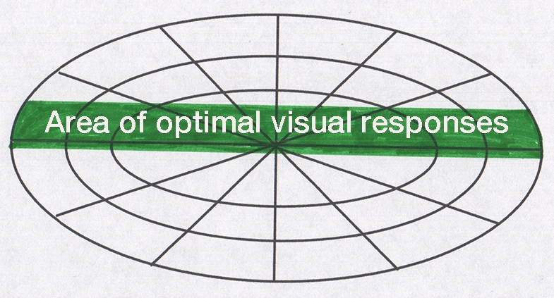 Connor's optimal visual band, as discovered by his mother