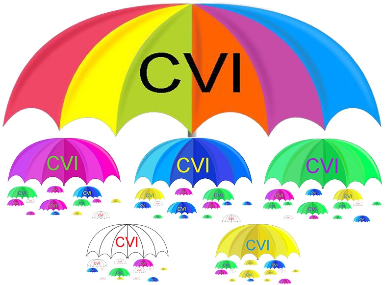 CVI is an umbrella term for many different individual cerebral visual impairments.