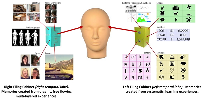 Using filing cabinets as an illustration for our left and right temporal lobes, consider the difference between what they both store, and how they work together, in synchronised harmony.