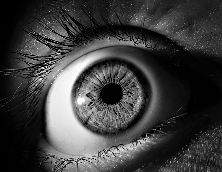 The term ocular means of, or relating to the eyes.