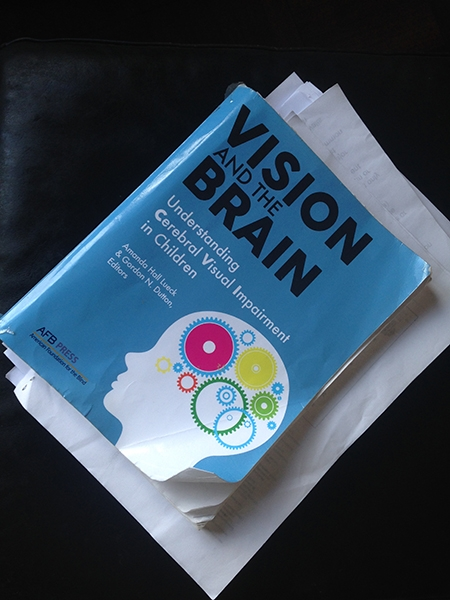 Gordon Dutton's Webinar, made for Perkins School for the Blind (USA), is an hour long fascinating journey through the visual brain.