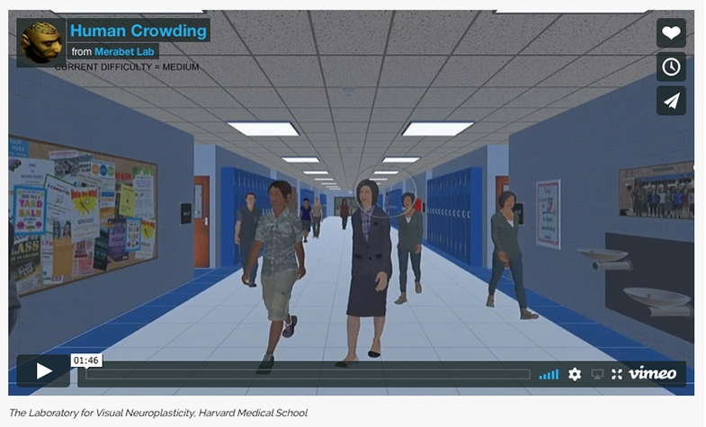 Short virtual reality test considering the challenge for the person with CVI to pick someone out in a crowd
