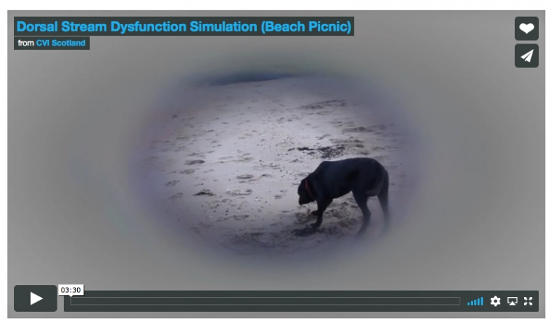 The film, with a short introduction from Dr Andrew Blaikie, aiming to show how vision may be altered according to DSD, compared to typical vision.