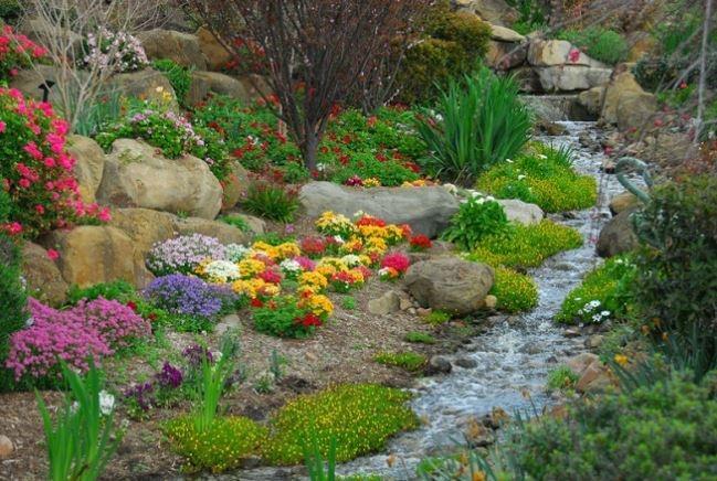 An example of a rock garden