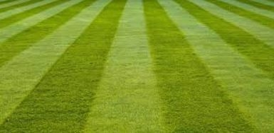 Stripes on your lawn