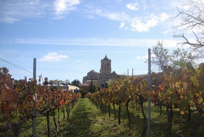 Irache Monastery Surrounded by Vineyards